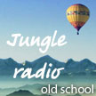 Jungle Radio Station (Джангл)